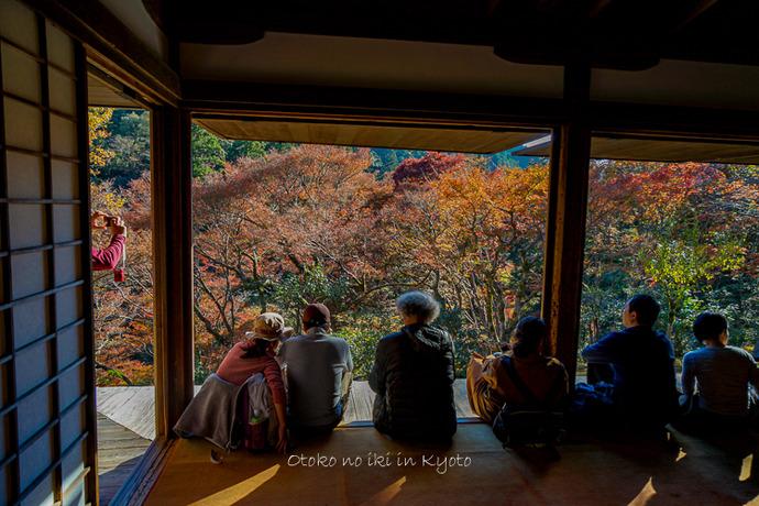 そうだ京都いこう20192019-65