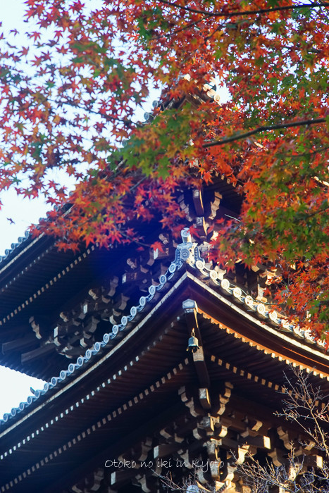 京都112511月-20