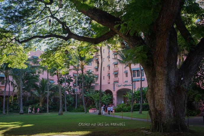 201412_Hawaii12月-21