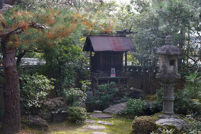 そうだ京都いこう20192019-183