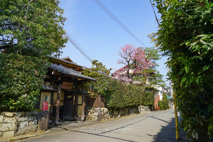 0402京都3月-169