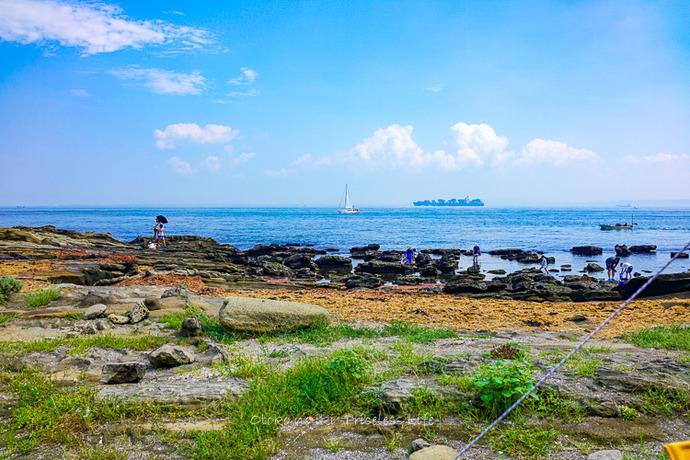 三浦海岸2019-5