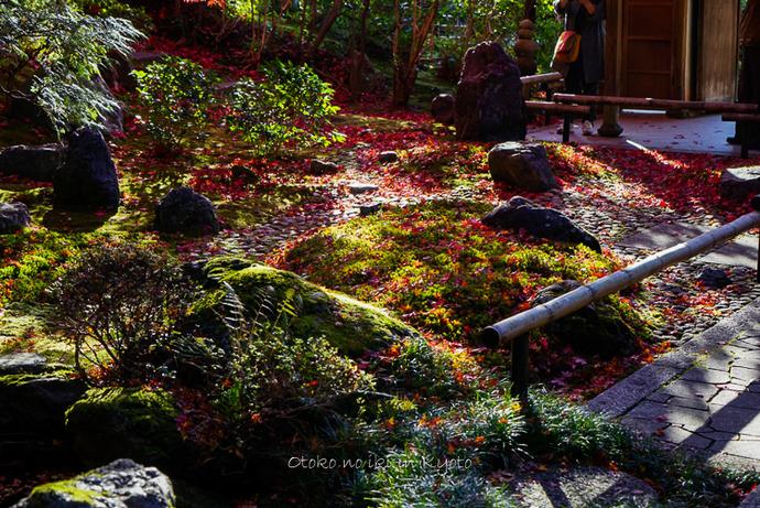 1123京都11月-15