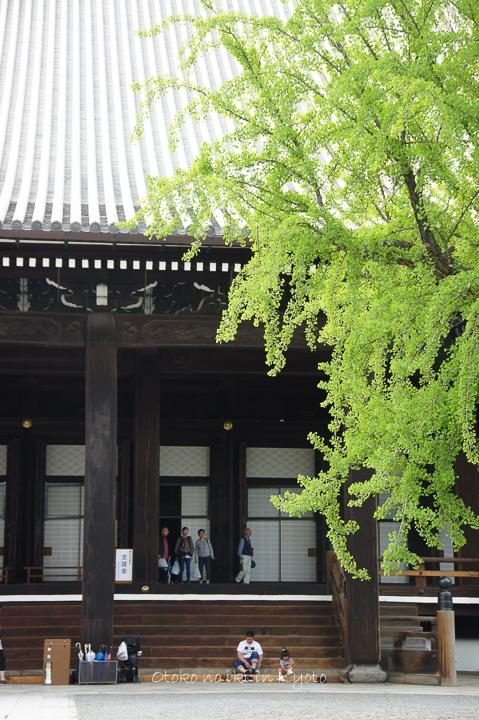 0904西本願寺5月-6