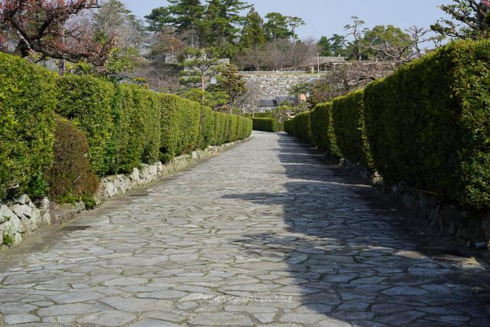 0620松阪3月-2