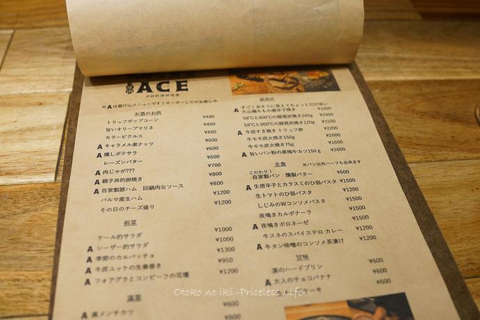 ACE2019-5