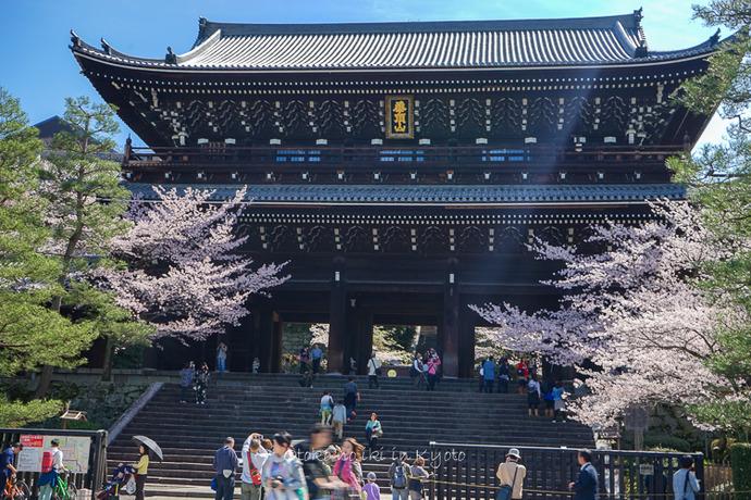 0407京都4月-22