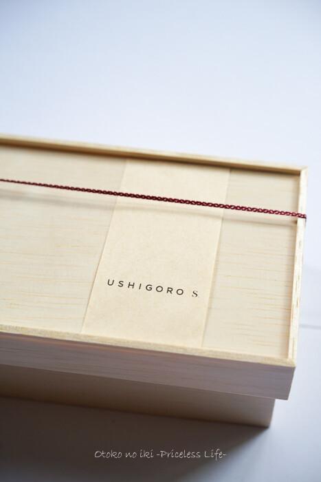 USHIGOROS2020-3