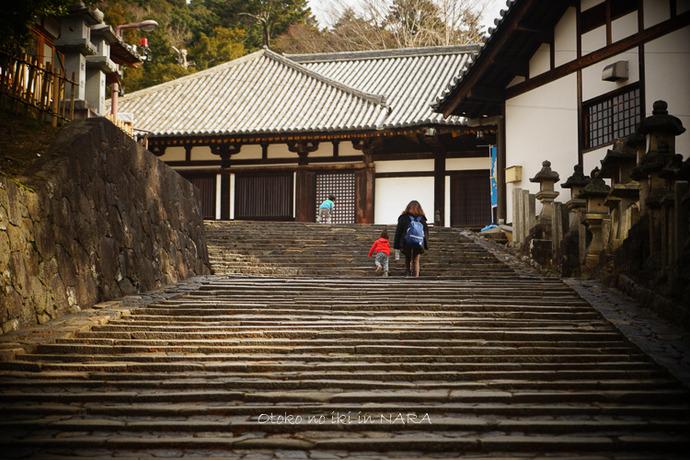 奈良2020-24