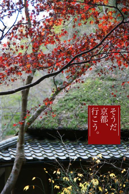 1224-0京都