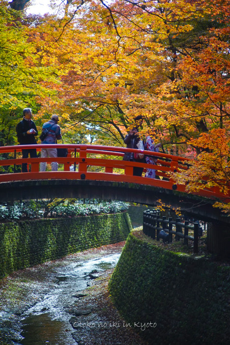 1123京都11月-7