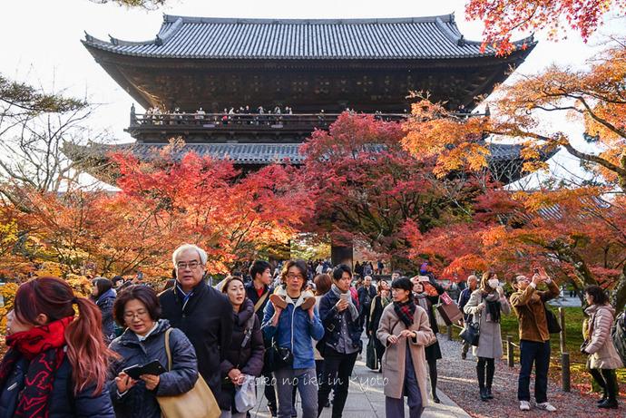1123京都11月-21