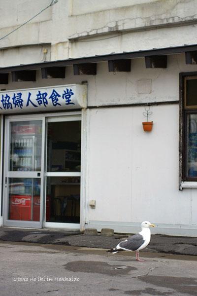 1010-10漁協食堂