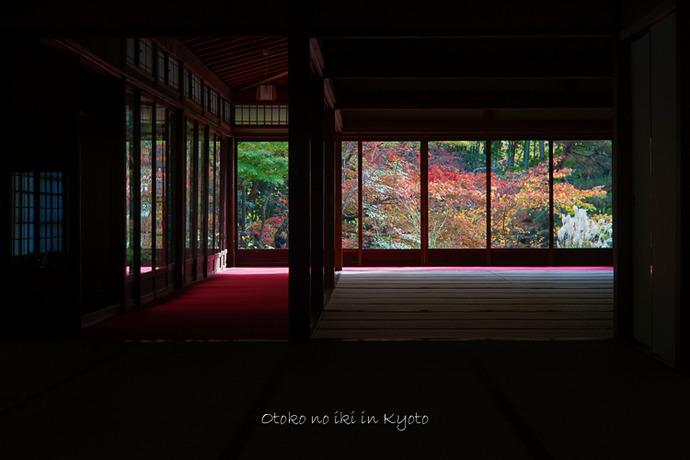 1108京都11月-19