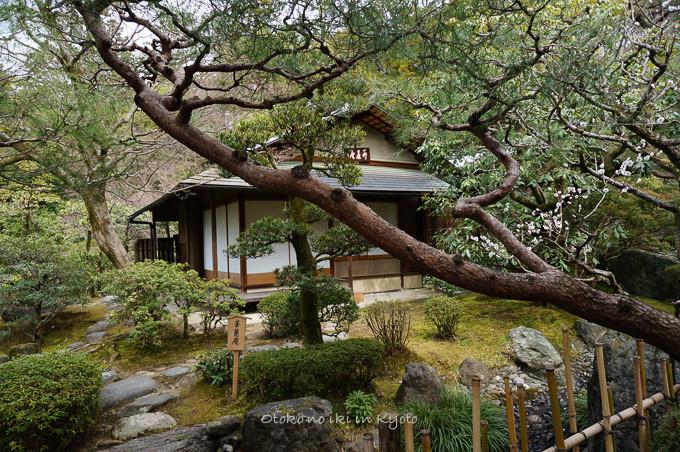 0324京都3月-22