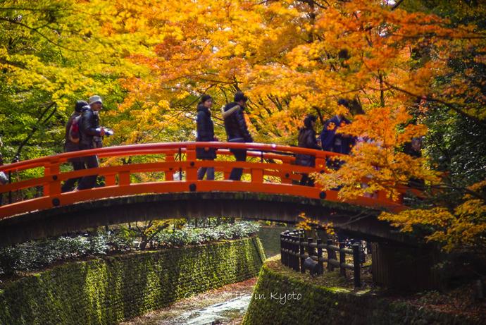 1123京都11月-8