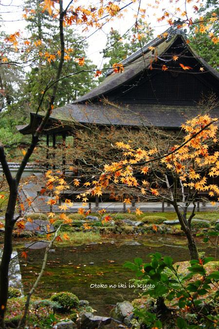 1224-2南禅院