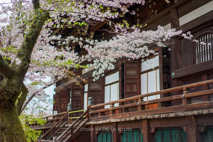 0407京都4月-96