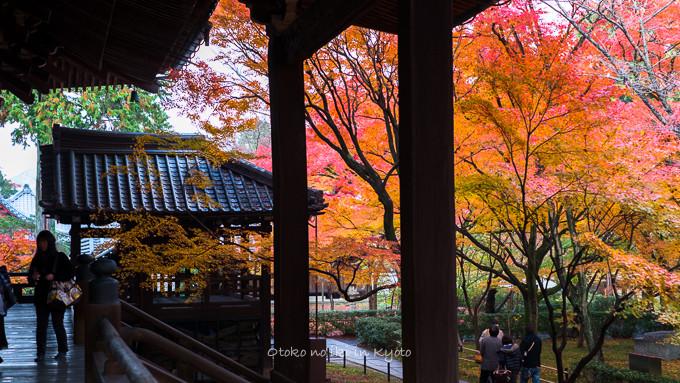 0404京都紅葉11月-27