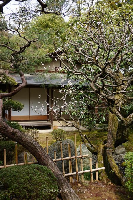 0324京都3月-23