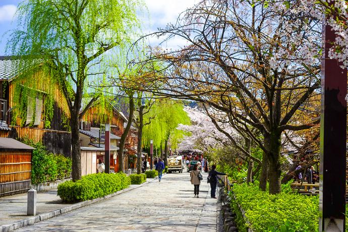 0407京都4月-6