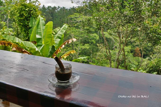 1107-5コーヒー農園