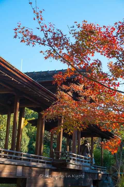 1115渉成園11月-14