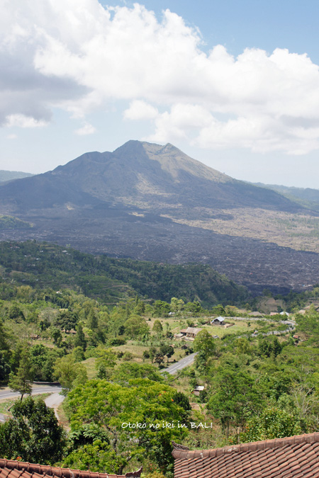 1107-24山