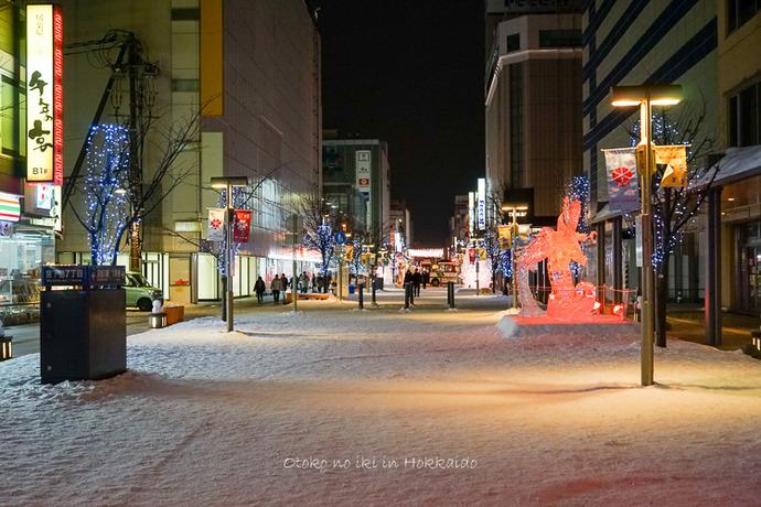 0301富良野2月-134