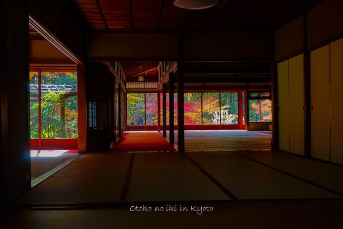 1124京都11月-24