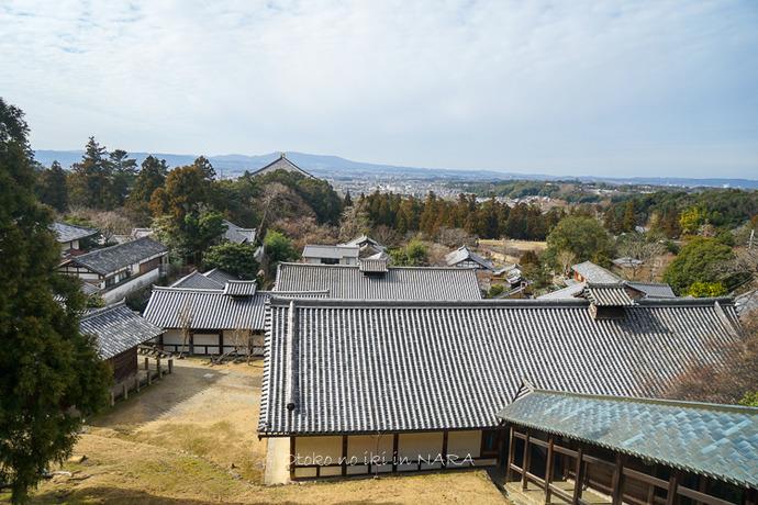 奈良2020-27