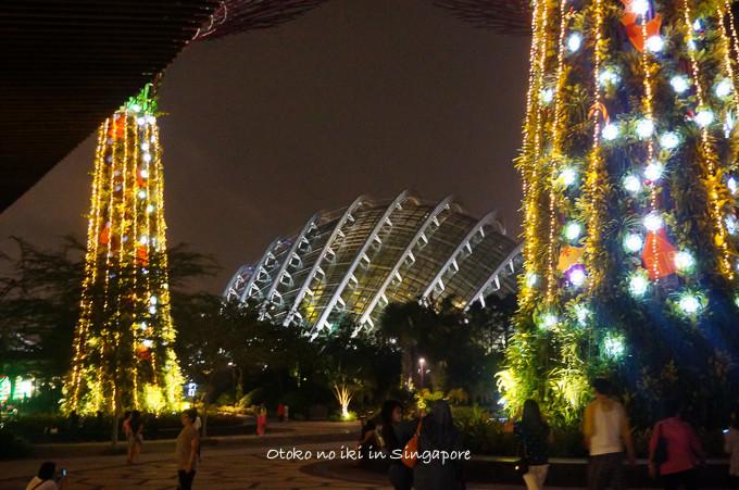0113Singapore12月-17