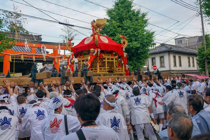 0524京都下御陵5月-6