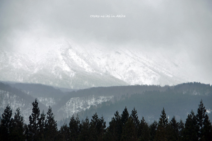 0307-5雪山