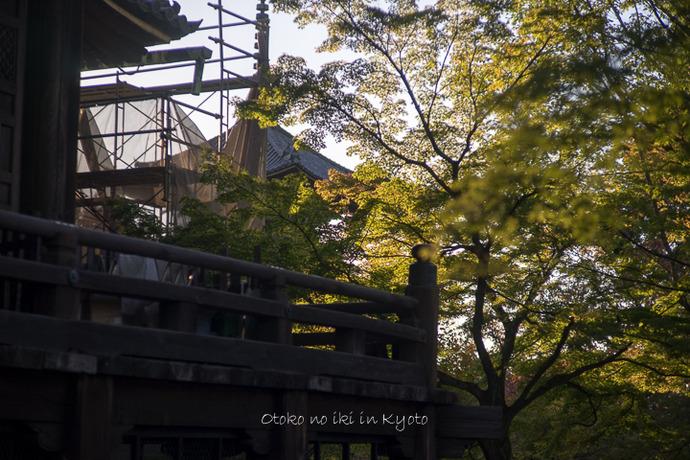 1020KYOTO10月-84