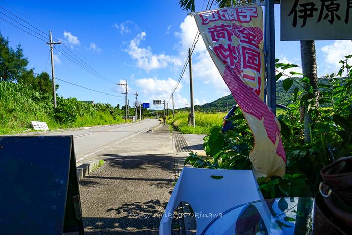 0701石垣島6月-10