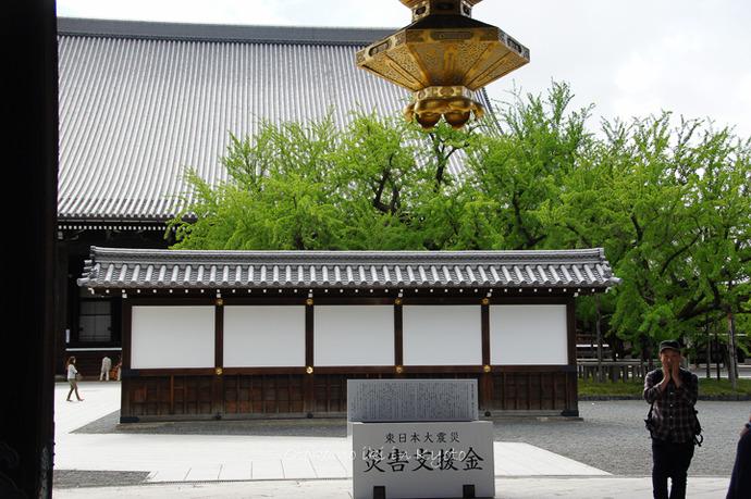 0904西本願寺5月-4