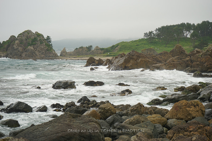 0922種差海岸7月-24
