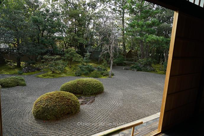 そうだ京都いこう20192019-182
