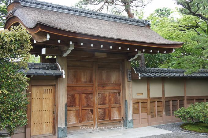 201205京都朝マラソン5月-10