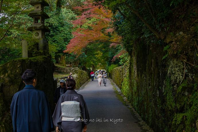 1112京都11月-4