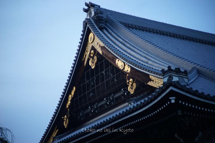 1108京都11月-56