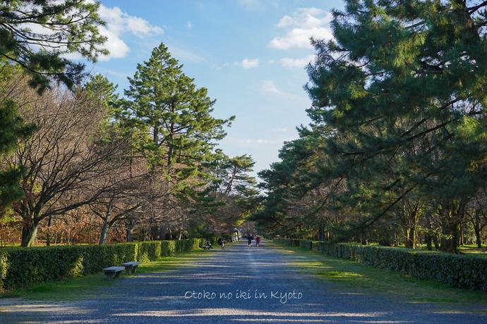 0329京都3月-39