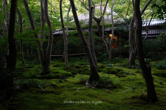 0819京都8月-25