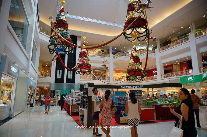 0113Singapore12月-3