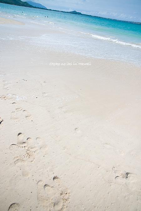 0728-10砂浜縦