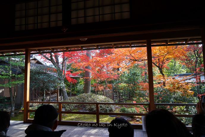 1124京都11月-13