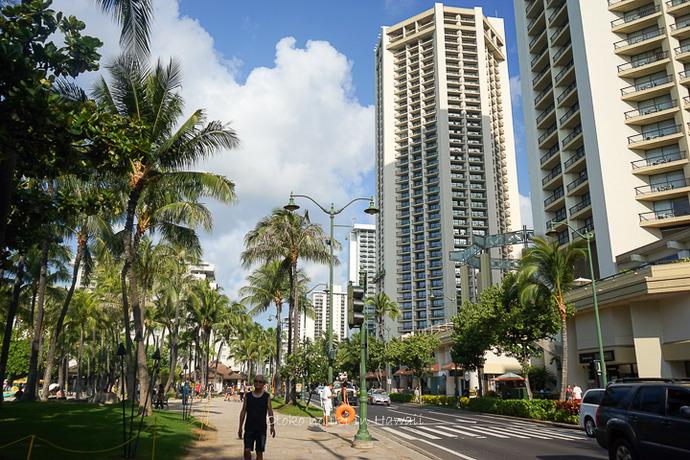 201412_Hawaii12月-86