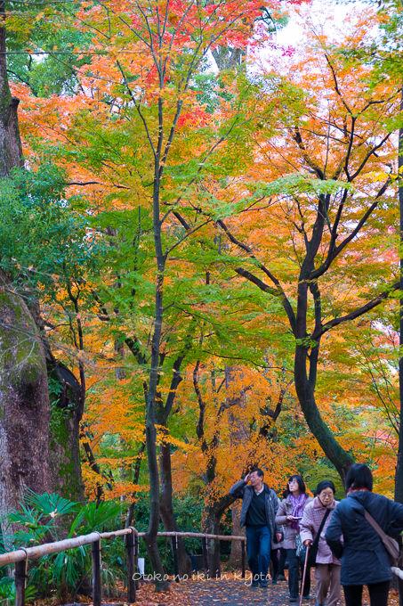 11月京都2012北野天満宮-14
