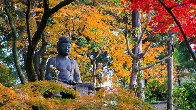 0602京都11月-6